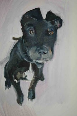"""Toki"" by Sally Muir, contemporary English artist known for her dog portraits"