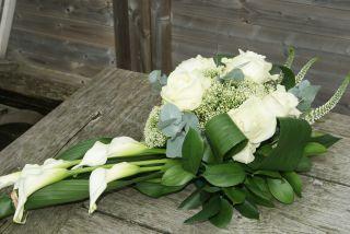 Afbeelding van http://bloemen-els.be/DSC04300.JPG-for-web-normal.jpg.