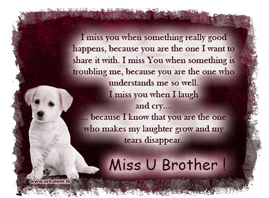 Best 25+ Brother Quotes Ideas On Pinterest