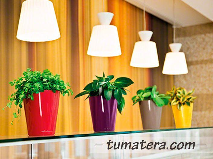Encuentralas en: http://www.tumatera.co/products/matera-inteligente-02-mi-141418deltini/