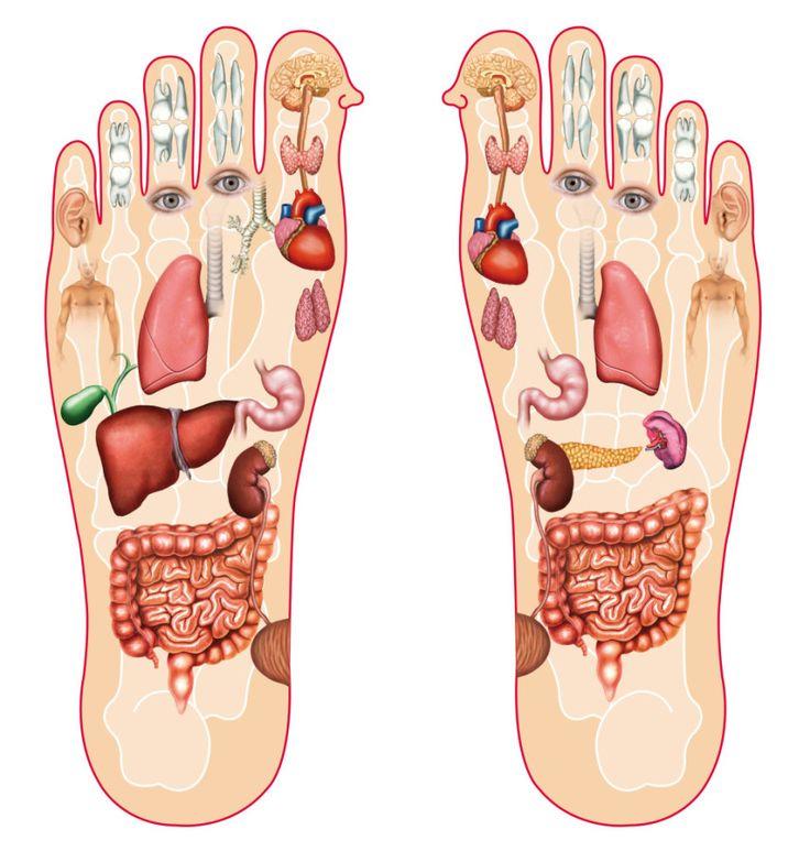 Masírujte si tieto body na nohách pred spaním a účinky sa dostavia okamžite | Radynadzlato.sk