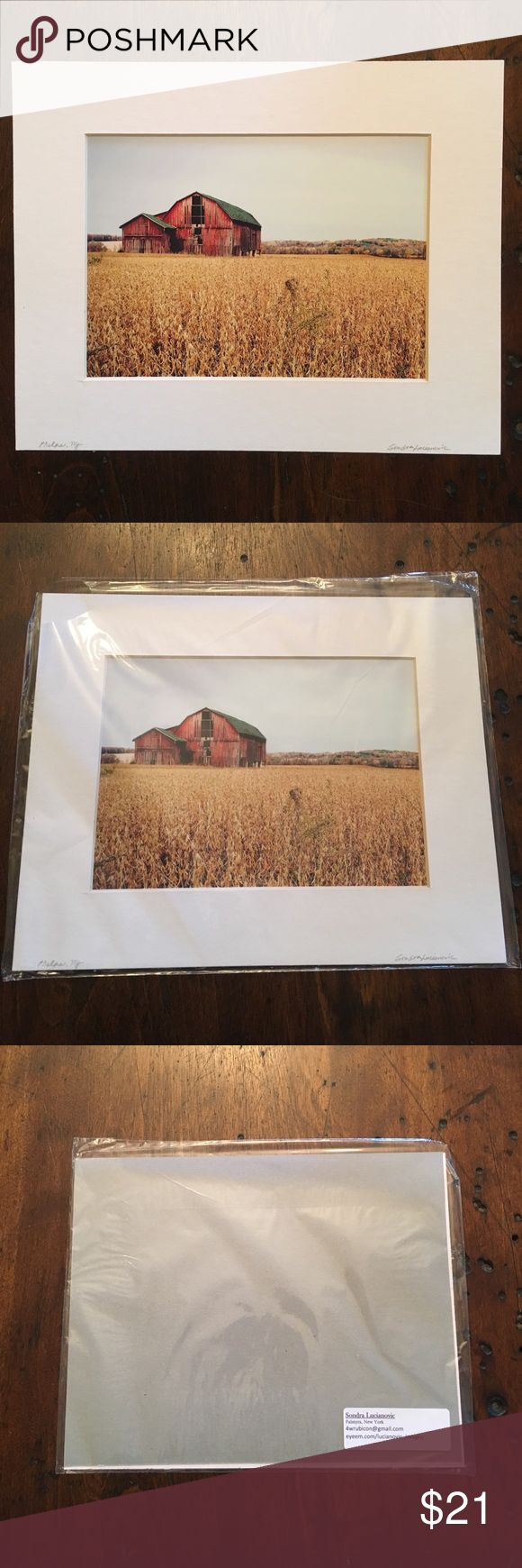 8x10 mounted photograph Local barns of the Finger Lakes region in NY. All works are original and taken by me. White matte board frames out this photograph depicting an old barn in Phelps NY. 8x10. Signed. Other