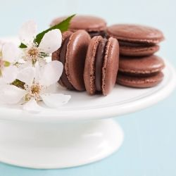 Chocolate Macaron: a sophisticated and delicate dessert