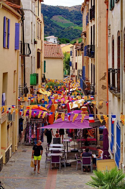 The city of Banyuls-sur-Mer is a small town located south of France. The city of Banyuls-sur-Mer is located in the department of Pyrénées-Orientales of the french region Languedoc-Roussillon.