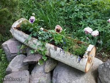 Koivu-kukkalaatikko