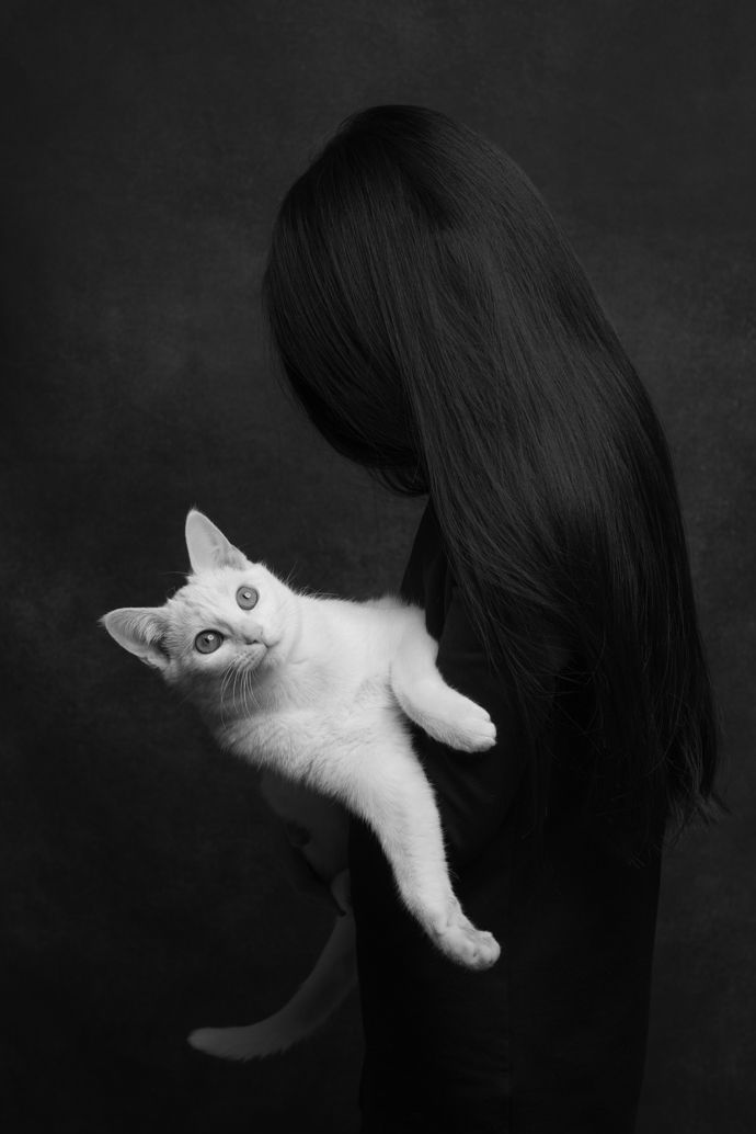 Best Feline Photography Images On Pinterest Photography - This photographer is celebrating stray cats through majestic portrait photographs
