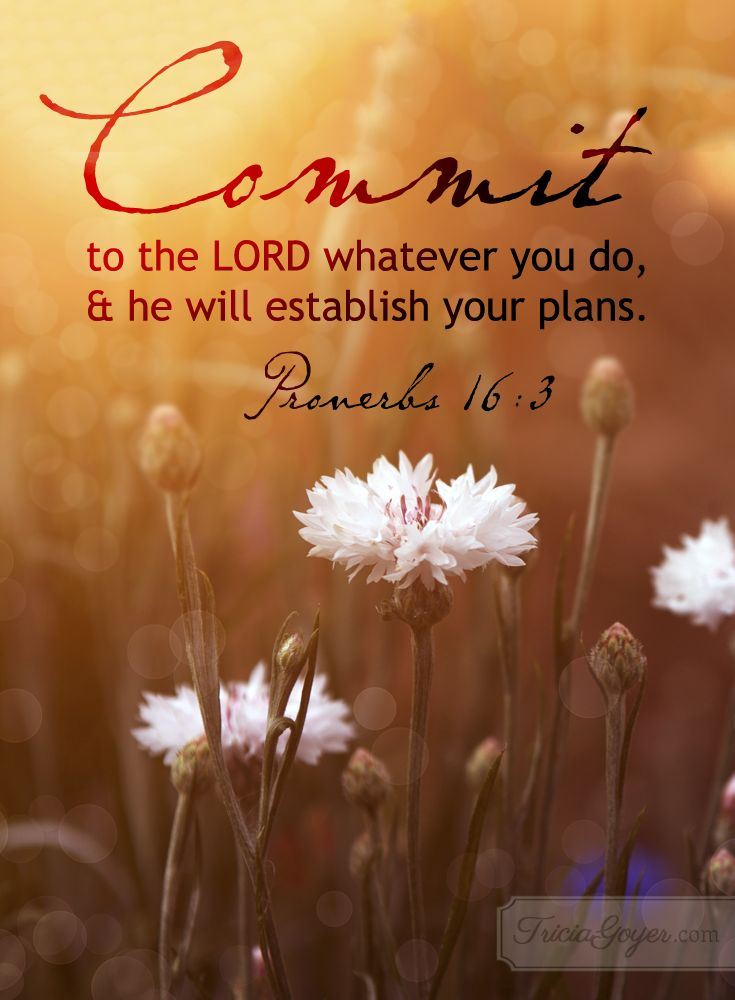 Proverbs 16:3 (NKJV) ~~ Commit your works to the Lord, and your thoughts will be established. ~~ Commit