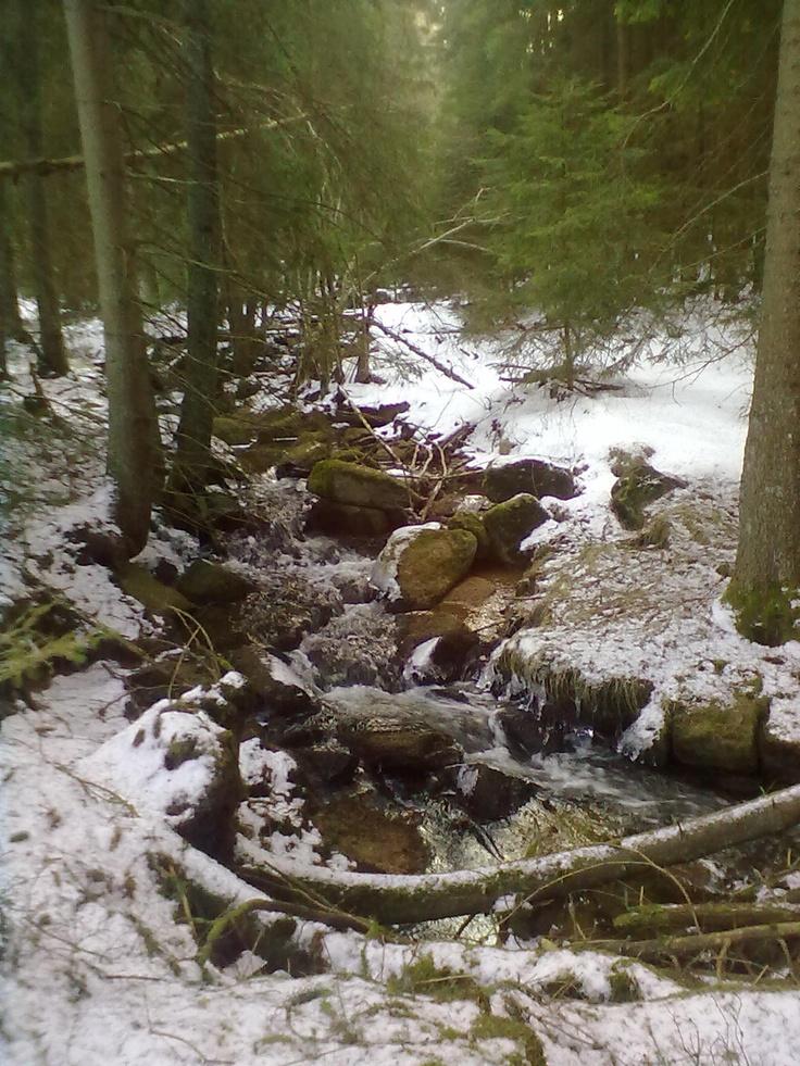 Potok pstruhovec