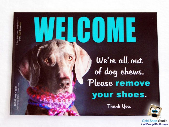 SALE! Weimaraner Funny WELCOME Sign - We're All Out of Dog Chews, Please Remove Your Shoes - No Shoes Signs by ColdSnapStudio on Etsy https://www.etsy.com/listing/220996554/sale-weimaraner-funny-welcome-sign-were