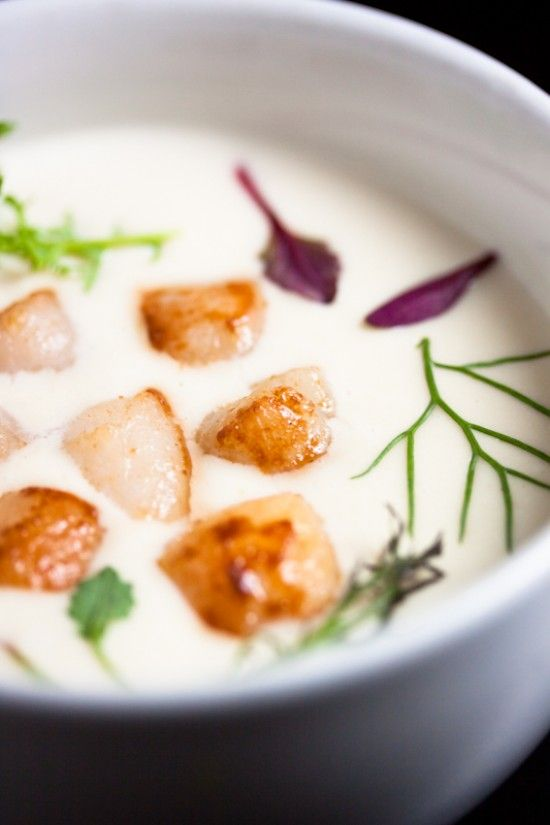// cauliflower soup with seared scallops