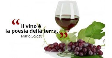Il vino è la poesia della terra. #MarioSoldati #Vino