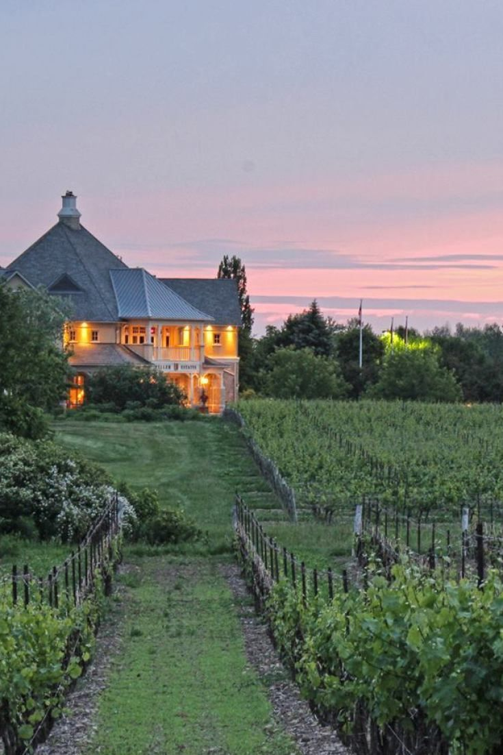 14 Of The Best Wineries In The Niagara Region