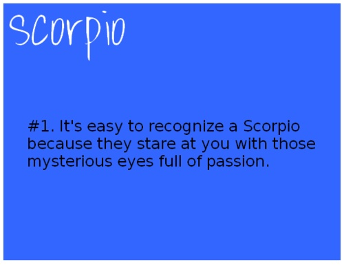 Staring Scorpio.  Awkward eye contact moment