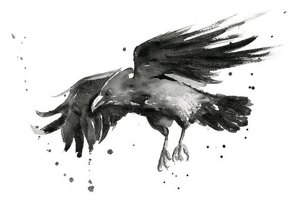 Black Flying Raven Watercolor painting - Art Print  A Giclee Print of my original watercolor painting of a beautiful flying black Raven.  - High