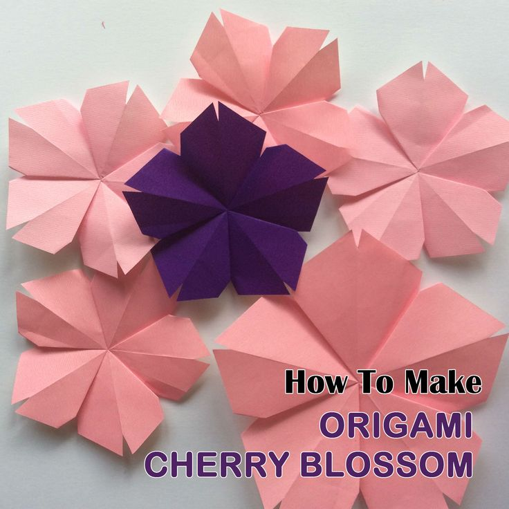 How To Make Origami Cherry Blossom - Easy Origami - Origami Tutorial for Beginners