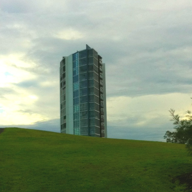 High rise from Sydney Park