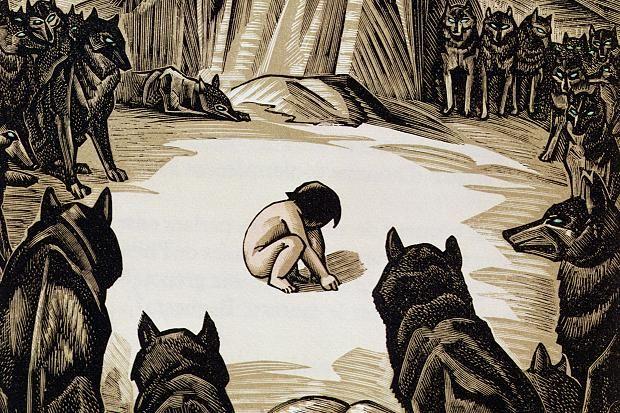An illustration for Kipling's The Jungle Book by Edward Julius Detmold (1883-1975)