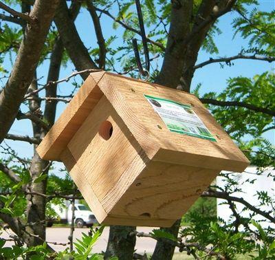 Mini-Wren. Solid #cedar construction, cleanout, & sharp looks.  #birdhouse #birdhouses