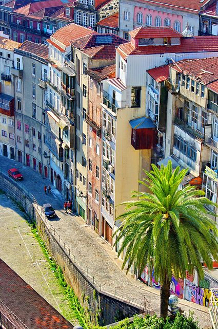 PORTO an interesting PORTUGESE CITY ON THE DOURO RIVER. The best way to explore the winding & hilly roads is by foot, where you will discover beauty history & culture, & just how simply photogenic Porto is, with its old architecture & colorful houses! #Beautiful #Places #Photography