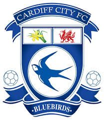 Image result for cardiff city fc