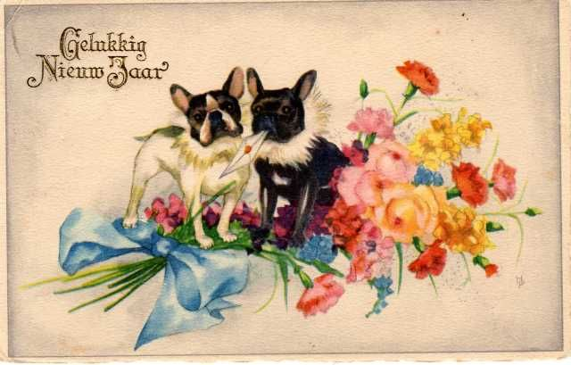 French Bulldog - postcard