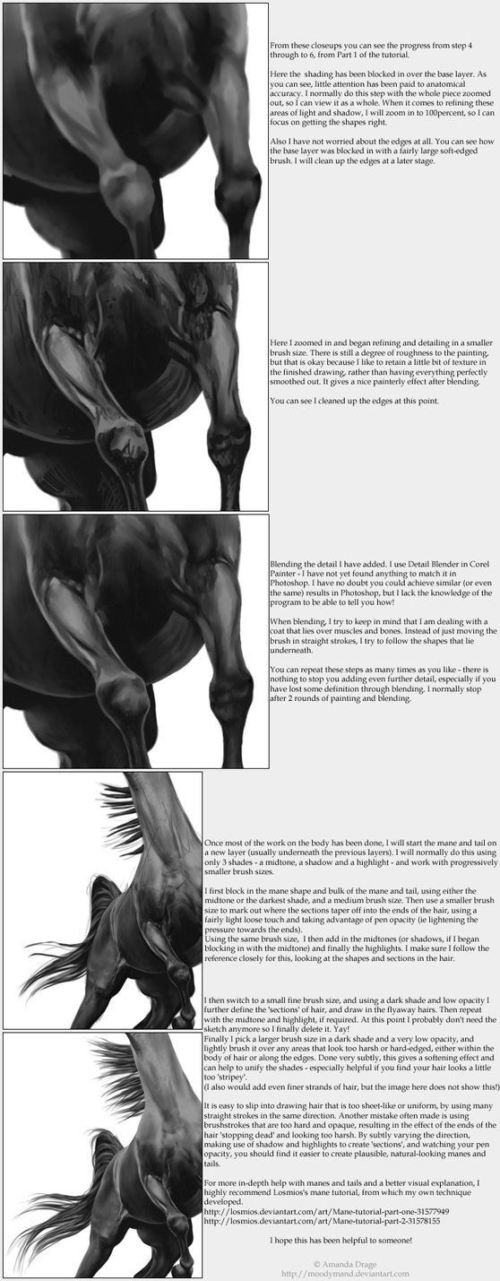 More How To Draw Horses