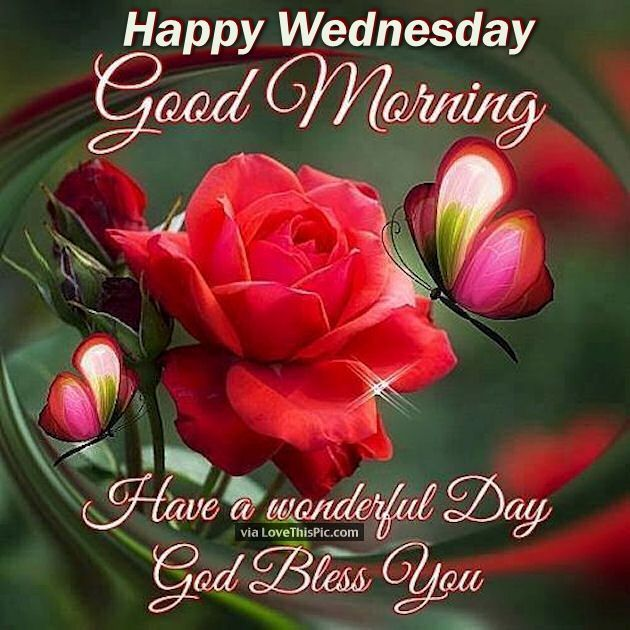 Good Morning Wednesday Images : Happy wednesday good morning have a wonderful day quotes