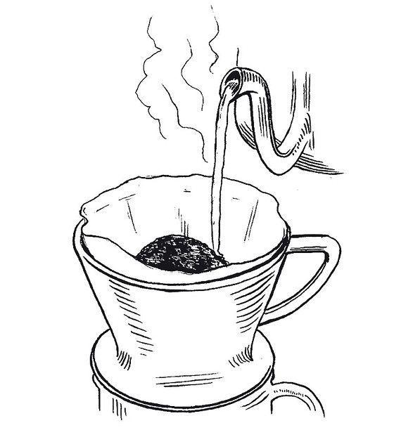 Kaffeepflanze zum Abnehmen