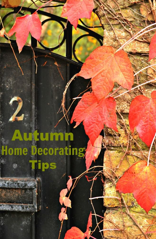 Autumn Home Decorating Tips