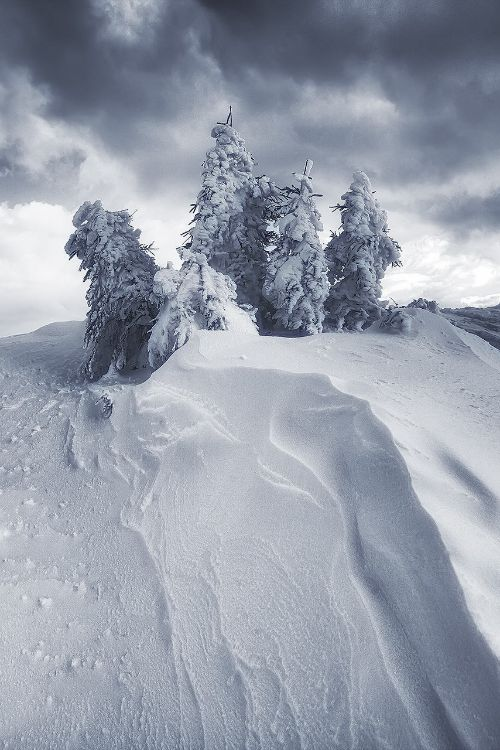 Somewhere on Earth, Le Chasseron, Switzerland, by LIttle BiG NatuRe, on 500px.