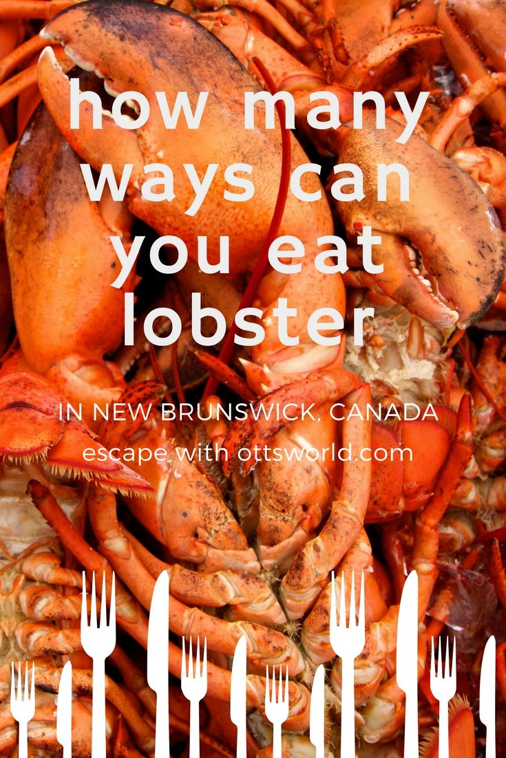 I was on a New Brunswick, Canada lobster mission - try all the different ways they prepare and serve lobster. From pizza to poutine to lattes - here's what I found...