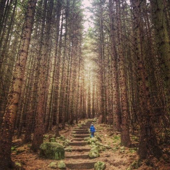 Hiking In Scotland with Kids, Bennachie. #instagram #travel