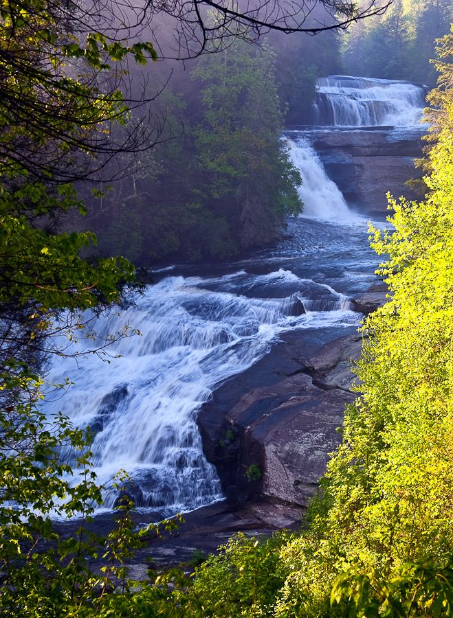 Dupont State Forest, High falls, NC
