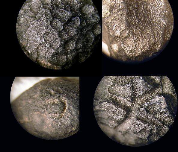 515 best meteorite images on pinterest cosmos earth