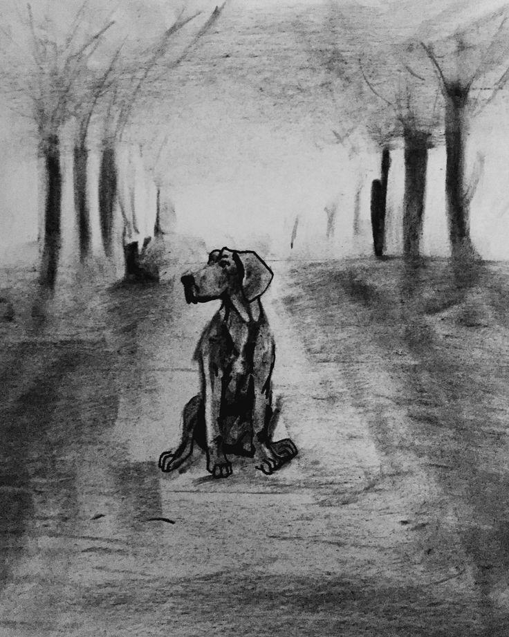 weimaraner by Kyan De Vere