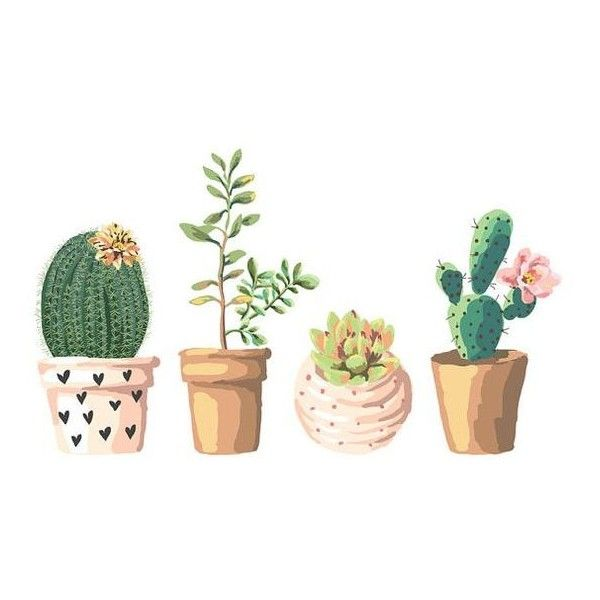 Succulent Illustration ❤ liked on Polyvore featuring home, home decor, wall art, quote wall art, floral home decor, flower illustration, typography wall art and word wall art