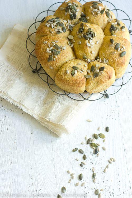 Butternut squash two ways: cake & bread/Duas formas de se usar abóbora  de pescoço: bolo e pão