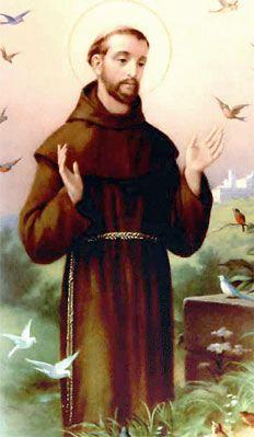 """""""Cominciate col fare ciò che è necessario, poi ciò che è possibile. E all'improvviso vi sorprenderete a fare l'impossibile."""" (San Francesco d'Assisi)"""
