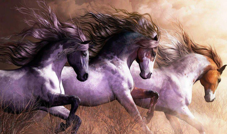Three Spectacular Running Indian-Type Ponies.