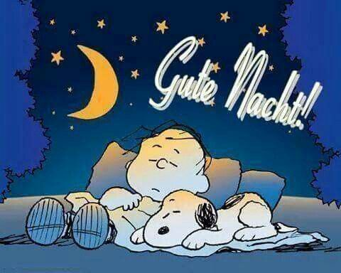 Wünsch euch eine gute Nacht - http://guten-abend-bilder.de/wuensch-euch-eine-gute-nacht-45/