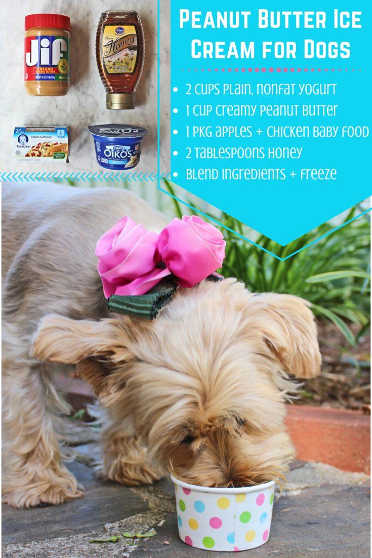 Homemade Frozen Dog Treats Recipe | HGTV Design Blog – Design Happens
