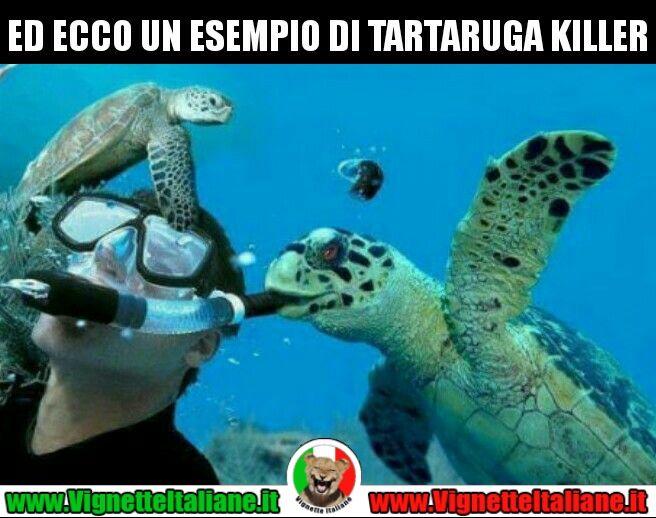 La #tartaruga #killer #vignetteitaliane.it #vignette #italiane #immagini #divertenti #lol #funnypics #umorismo #humour #ridere #risate #humor #animali