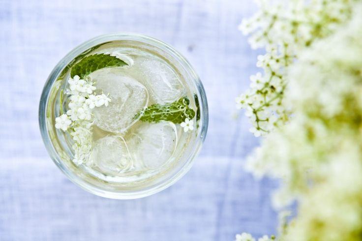 Kitchenette - Sirup z bezinkových květů