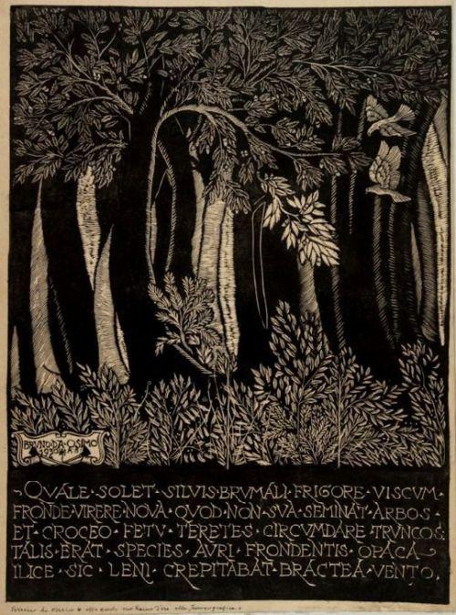 Bruno da Osimo, Il ramo d'oro, 1930. Xilografia