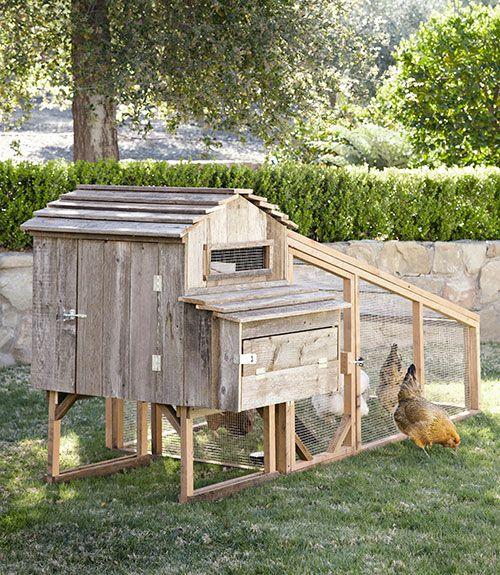 143 best diy hen house chicken coop designs images on for Country living house plans you can buy