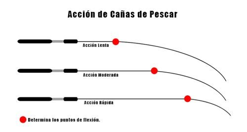 Tipos de acción de las cañas de pescar
