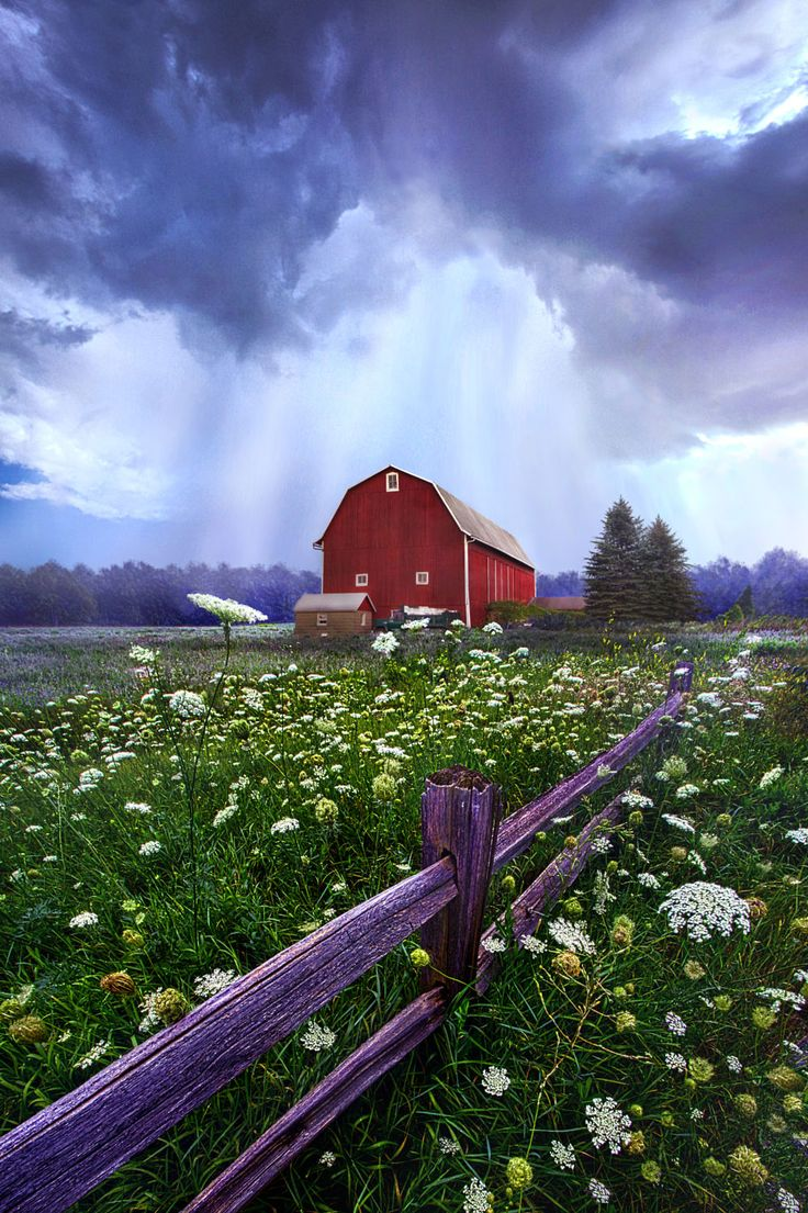 Summer's Shower by Phil Koch on 500px