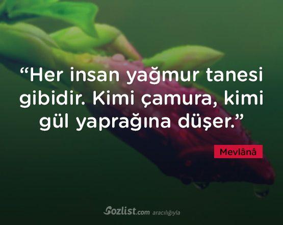 """""""Her insan yağmur tanesi gibidir. Kimi çamura, kimi gül yaprağına düşer."""" #mevlana #celaleddini #rumi #sözleri #yazar #şair #kitap #şiir #özlü #anlamlı #sözler"""