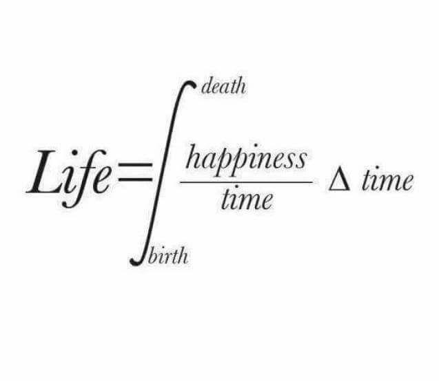 Integral över livets mening