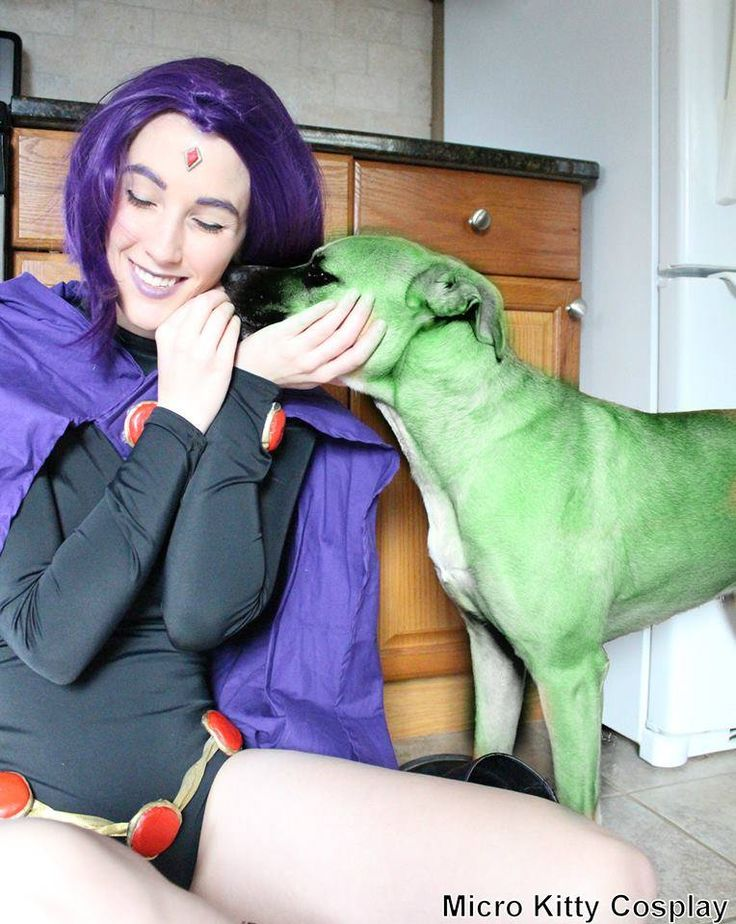 totally going to to do this with our dog.  the best raven and beast boy cosplay
